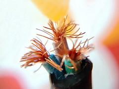 Electric Wire Flowers (Christian Chene Tahiti) Tags: newzealand auckland nz akl nouvellezélande orange macro jaune rouge wire bokeh vert hmm blanc électricité cuivre câble macromondays câbleélectrique bleu copper métal mobile samsung téléphone s7e