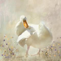 Whimsical Pekin Duck... (Patlees) Tags: pekinduck textured whimsical dt textures