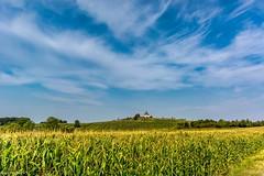 Blick zur Schwartenbergbaude (Andi Fritzsch) Tags: schwartenberg schwartenbergbaude erzgebirge oremountains sachsen saxonia natur nature naturephotography landschaft landscape landscapephotography sky blusky himmel blauerhimmel wolke wolken cloud clouds cloudscabe cloudscapephotography nikon nikond7100 sigma sigma1020mm