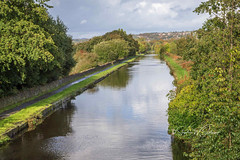 SJX_0368 - Leeds-Liverpool Canal, Burnley (SWJuk) Tags: swjuk uk unitedkingdom gb britain england lancashire burnley home canal leedsliverpoolcanal straightmile water trees shrubs foliage flat calm reflections bluesky clouds landscape waterscape 2019 oct2019 autumn autumnal autumncolours nikon d7200 18140mm rawnef lightroomclassiccc