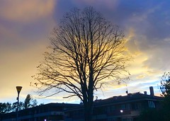 Colorido atardecer (eitb.eus) Tags: eitbcom 16599 g1 tiemponaturaleza tiempon2019 anochecer gipuzkoa hondarribia josemariavega