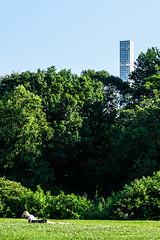 Reading in Central Park (regal_algorithm) Tags: trees colorful building vivid nature person city park reading urban