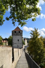 On the Walls (sharon.corbet) Tags: 2019 trees walls towers citywalls switzerland lucerne
