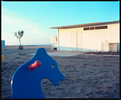 (Sleeping Season) (Robbie McIntosh) Tags: mamiyarb67pros mamiyarb67 mamiya mamiyasekor65mmf45 120 mediumformat 6x7 negative film filmisnotdead moyenformat mittelformat medioformato pellicola bellinifotoc41 bellini c41 dyi selfdevelopment homedevelopment newtopographics landscape autaut kodakektar kodak ektar kodakektar100 topography topographics decay beach sea alteredlandscape dawn baiaverde castelvolturno