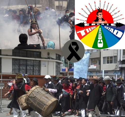 #equador #tambor 🔊 #pingullo  #tamboreros #pingulleros #mozo #danza #eraprecolombiana 🎥#elettritv💻📲 #indigenas 🎭 #comunicado #urgente #libertad #tierra #cultura #somosconaie #webtv #sottosuolo #musica :