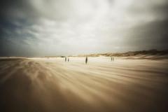 3461 (Elke Kulhawy) Tags: holland himmel beach surreal sky strand grain grainy dutch art abstract kunst kontrast lensbaby lensbabycomposer landscape landschaft light