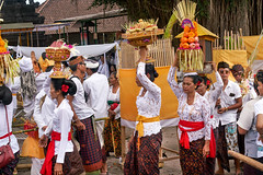 Balinese Hindus carry offerings for for a funeral ceremony, Lembongan Island, Indonesia. (JJ Doro - Bangkok) Tags: cremation funeral religioun canangsari hinduoffering balinese lembongan worship island indonesia devotion offerings blessing prayer ceremony
