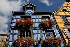 Blues!! (puri_) Tags: casas madeira azul amarela céu nuvens flores janelas