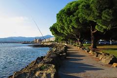 Un día precioso en Hondarribia (eitb.eus) Tags: eitbcom 16599 g1 tiemponaturaleza tiempon2019 costa gipuzkoa hondarribia josemariavega