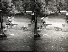 PICT0147 (Dominik Lange) Tags: stereoscopy stereophotography stereo3d stereography stereoscopic superimposition overlay outdoor openspace outside poetry documentary alteredstate abstract asahipentax blackandwhite beamspliter city dreams daydream diaries experimental expressionism filmpoetry freetime visionary parkcity lowtech