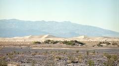 Mesquite Flat Sand Dunes (Boris Capman) Tags: 645 mediumformat bronica etrs kodak portra160 mesquite flat sand dunes deathvalley nationalpark california usa desert nature mountains filmisnotdead filmphotography 120film roadtrip backpacking analog argentique outside outdoor wanderlust