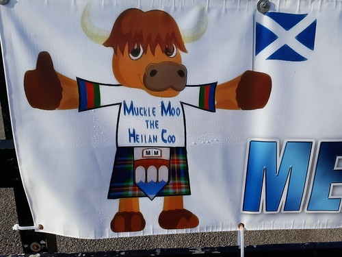 Muckle Moo the Heilan Coo