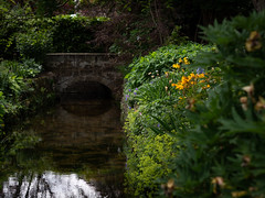 Derbyshire 2019: Brookside (mdiepraam) Tags: derbyshire 2019 melbournehall garden brook flowers bridge reflection