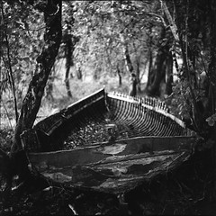 rainy day in decay (Scenes from the life of a double monster) Tags: film mediumformat blackandwhite bw acros rollei rolleiflex killarney 6x6 tlr tessar trees ireland autumn boat