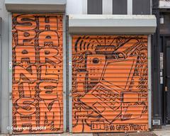 Security Gate Murals by BlusterOne, East Harlem, New York City (jag9889) Tags: 2019 20191012 art artwork color eastharlem entrance gate graffiti harlem manhattan mural ny nyc newyork newyorkcity outdoor painting rolldown secondavenue securitygate shop sign spanishharlem store streetart tagging text usa unitedstates unitedstatesofamerica jag9889