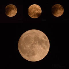 Full Moon 10-12-19 Collage (Chris Ehrlich Photography) Tags: cde photography nature moon full clouds solar nikon sky night ngc october