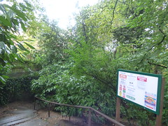 Moseley Park - Chantry Road, Moseley - steps and noticeboard (ell brown) Tags: moseley birmingham westmidlands england unitedkingdom greatbritain chantryrd tree trees moseleypark gate moseleyparkpool sign noticeboard birminghamuk