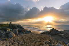 P O K I N G  O U T (Dsalla10) Tags: awake amanecer paisaje landscape rock rocas cloudy clouds nubes sol sun beach playa