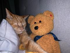 Day 279 - Friends (nualao) Tags: 365 cat pad year7 stockport england unitedkingdom