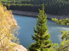 IMG_4775 (germancute) Tags: outdoor ohra nature autumn herbst landscape landschaft thuringia thüringen germany germancute deutschland talsperre wald