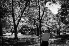 IMG_3612 (titanium22) Tags: 東京 代々木公園 tokyo yoyogipark