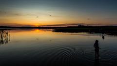 Sun sets behind the Wigry lake, Poland (Piotr_Lewandowski) Tags: wigry rosochatyróg suwalszczyzna podlasie jezioro lake sunset sun summer travel poland polska cloud sky blue bluehour sillhouette