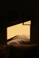 Golden Hour (Monic@*) Tags: sun home goldenhour shadow ombra casa sole luce oro finestra window sunset tramonto