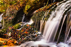 Fall  and Waterfall in Tennessee (anzere03) Tags: x100f fall waterfall exposure longexposure tennessee leaves
