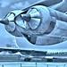 Convair Peacemaker USAF B-36 bomber Randolph Field San Antonio, TX 1955 [Robt. Yarnall Richie]
