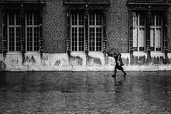Regentag (Deinert-Photography) Tags: streetfotografie wetter deutschland schwarzweiss regen street schwarzweis bremen blackwhite cityschlachte fujifilmxt3 regenschirm fujifilm23mmf14 citylife fuji hb hansestadt regenwetter streetart streetphoto streetphotography ubanphotography urban xt3 lluvia ombrello parapluie pioggia pluie rain regenscherm schirm umbrelle