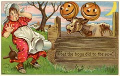 Halloween Mischief—What the Boys Did to the Cow (Alan Mays) Tags: ephemera postcards greetingcards greetings cards paper printed halloween holidays october31 jackolanterns pumpkins milkmaids maids women milkingstools caps bonnets hats milkpails pails buckets clothing clothes aprons startled animals cows moons halfmoons pranks mischief humor humorous funny comic borders illustrations orange green yellow red blue 1908 1900s 1911 1910s antique old vintage typefaces type typography fonts juliusbien bien juliusbienco jbc postcardpublishers newyorkcity ny newyork 9804 halloweenseriesnumber980 halloweenseriesno980 series980 postcardseries