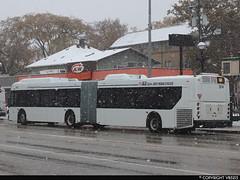 Winnipeg Transit #374 (vb5215's Transportation Gallery) Tags: winnipeg transit 2019 new flyer xd60 xcelsior
