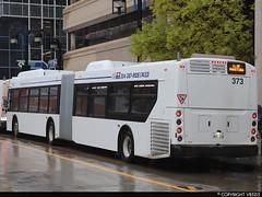Winnipeg Transit #373 (vb5215's Transportation Gallery) Tags: winnipeg transit 2019 new flyer xd60 xcelsior
