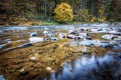 """Herbstzauber am Fluß Ilz, Bayrischer Wald. (nigel_xf) Tags: gutfeuerschwendt """"bavarian forest"""" """"bayrischer wald"""" niederbayern deutschland germany bayern bavaria """"ferien mit hund"""" """"holiday with dog"""" nikon d850 nigel nigelxf vsfototeam forest wald bäume trees herbst autumn landschaft landscape """"neukirchen vorm ilz flus river"""