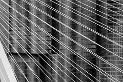 White on grey (michael_hamburg69) Tags: rotterdam niederlande netherlands südholland holland southholland bridge brücke erasmusbrug erasmusbrücke schrägseilbrücke nieuwemaas rheinmaasdelta erasmus strasenbrücke dezwaan vanberkelbos 1996 cablestayedandbasculebridge steel stahl nl derotterdam wilhelminapier