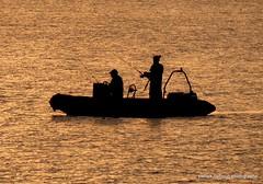 fishermen silhouette (patrickcolhoun) Tags: silhouette fishermen nature loughswilly donegal buncrana ireland inishowen fishing boat