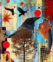 Autumn of ravens (CatnessGrace) Tags: digitalmania autumn collage