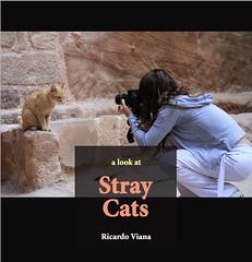 Stray Cats (ebook and paperback) (RViana) Tags: gatoderua filhote cat feline fluffy cuteness straycat puppy cub gato callejero streunendekatze verdwaalde kat chatégaré book paperback gatosderua world
