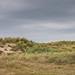 Wassenaar Dunes