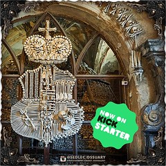 ☩💀 Click link in BIO for our current Kickstarter. 💀☩ ☩💀 Mailing list: https://ift.tt/2lTYHHU 💀☩ . . . . . #SedlecOssuaryProject #SedlecOssuary #KutnaHora #skulls #UNESCO #Sedlec #creepy #ossuary #church #historical #architecture #h (Sedlec Ossuary Project) Tags: sedlecossuaryproject sedlec ossuary project sedlecossuary kostnice kutnahora kutna hora prague czechrepublic czech republic czechia churchofbones church bones skeleton skulls humanbones human mementomori memento mori creepy travel macabre death dark historical architecture historicpreservation historic preservation landmark explore unusual mechanicalwhispers mechanical whispers instagram ifttt