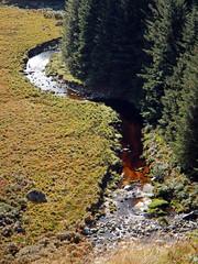 A coke-coloured stream circumnavigates the forest at Glenmacnass Waterfall in Ireland (albatz) Tags: glenmacnass waterfall falls ireland stream landscape