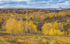 Autumn in Moscow... / Московская осень... (Vladimir Zhdanov) Tags: autumn october russia moscow city building architecture landscape field forest park hill tree grass nature sky cloud