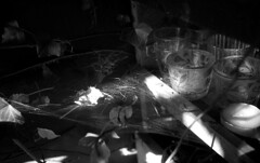 in some dark corners (salparadise666) Tags: nikon f3 hp eseries 35mm agfa apx 100 caffenol 15min nils volkmer analogue film slr detail bw black white monochrome