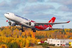 TC-JIZ Airbus A330-223 Turkish Airlines (Andreas Eriksson - VstPic) Tags: tcjiz airbus a330223 turkish airlines its that time year again 1794 departing arlanda rwy 19r