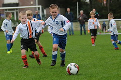 "HBC Voetbal • <a style=""font-size:0.8em;"" href=""http://www.flickr.com/photos/151401055@N04/48892643138/"" target=""_blank"">View on Flickr</a>"