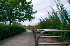 Ar...ceaux (Atreides59) Tags: berlin allemagne germany deutschland arbre arbres tree trees ciel sky nuages clouds green vert bleu blue pentax k30 k 30 pentaxart urban urbain atreides atreides59 cedriclafrance