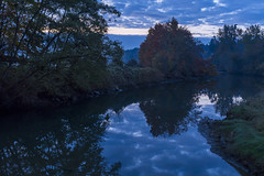 Dawn reflections (cdnfish) Tags: cowichanvalley cowichan cowichanestuary cowichanbay vancouverisland bc britishcolumbia canada estuary explore dawn pafphotography landscape landscapephotography longexposure water river riverbank clouds cloud reflections reflection bluehour tree trees fall autumn sony sonya7r3 sony2470f28gm