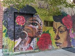"""There is a Rose..."" Mural by Lexi Bella and Danielle Mastrion, East Harlem, New York City (jag9889) Tags: 2019 20191012 architecture building eastharlem graffiti harlem house manhattan mural ny nyc newyork newyorkcity outdoor painting people rose spanishharlem streetart tagging usa unitedstates unitedstatesofamerica jag9889"