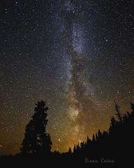 ...it's full of stars (bonniecairns1) Tags: nighttime nightsky nightphotography night stars stargazing nikon nikonphotography bonniecairns bonniecairnsphotography galaxy milkyway nikondigital britishcolumbia canada