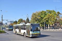Ikarus 415T - 5271 - 62 - 13.10.2019 (VictorSZi) Tags: romania bucharest bucuresti transport trolleybus troleibuz autumn toamna nikon nikond5300 ikarus ikarus415t bujoreni stb